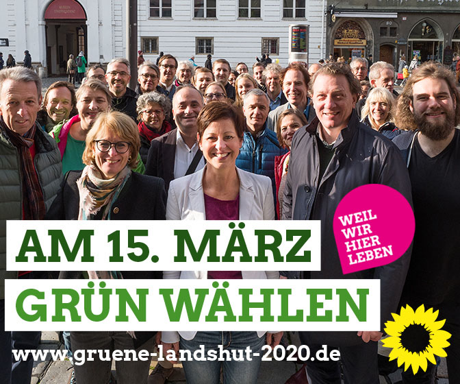 Grüne Stadtratteam 2020